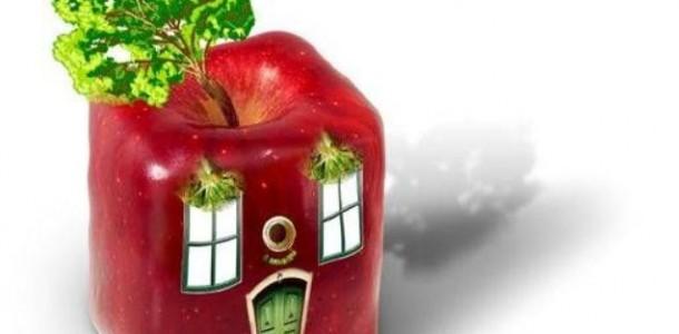 Elmanın Faydaları ve Mutfaktaki Hünerleri
