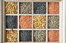Vejetaryenler İçin Ete Alternatif Protein Kaynağı Besinler