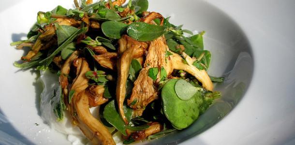 Mantarlı Semizotu Salatası Tarifi